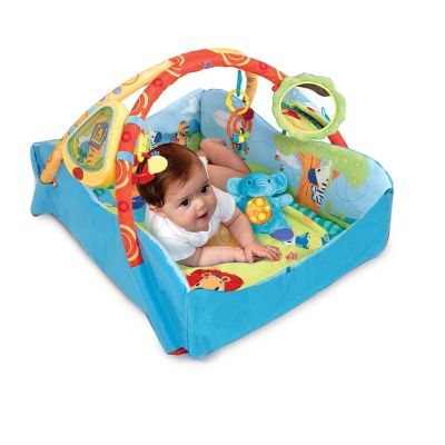 Bright Starts - Baby's Play Place Deluxe Edition