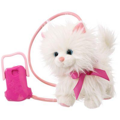 Noriel - Pisica Animagic Cassy