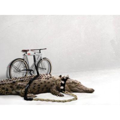 Vanmoof - Bicicleta VM5 3 viteze pentru barbati