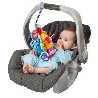 Taf Toys - Jucarie pentru landou/scaun auto Fazanul colorat