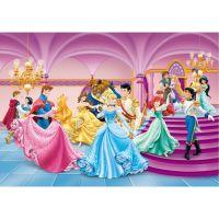 Diverse - Fototapet copii Printese Disney 255x180 cm