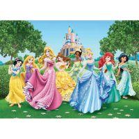 Diverse - Fototapet copii Printese Disney 360x254 cm