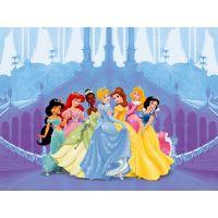 Diverse - Fototapet copii Printese Disney la bal 360x254 cm