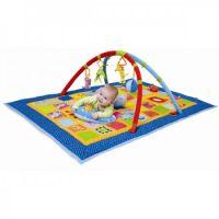 Taf Toys - Centru de joaca Curiozitati magice 3 in 1