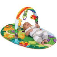 Salteluta de joaca Infantino Explore & Store Activity Gym