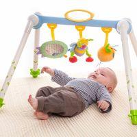 Taf Toys - Centru de joaca pliabil Albinuta Plimbareata