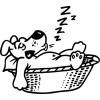 Sticker Catel somnoros