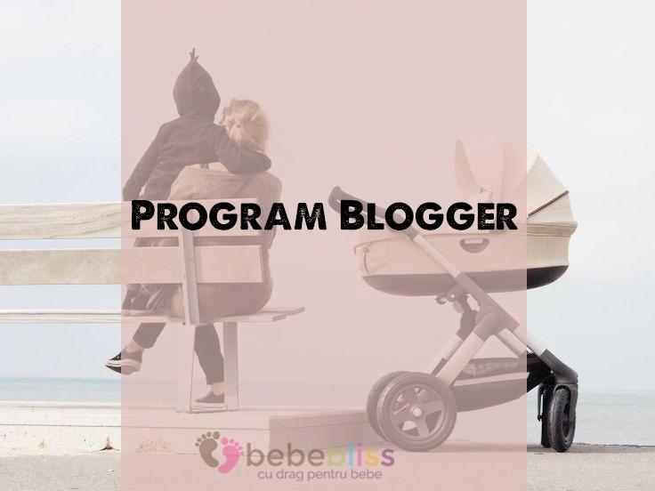 program blogger