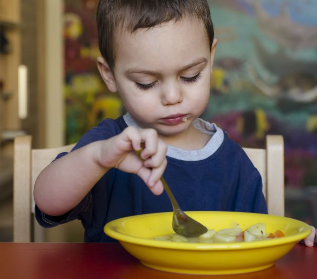 Legislatia privind alimentatia copilului la gradinita si scoala